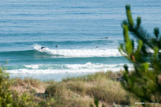 Madrugando en la Playa de Somo - Surfing