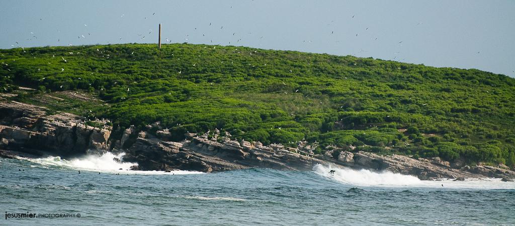 Isla de Santa Marina - Cantabria