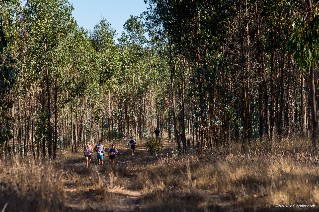 Salomon Trail Challenge 2018, foto 1. Foto: Jesus Mier