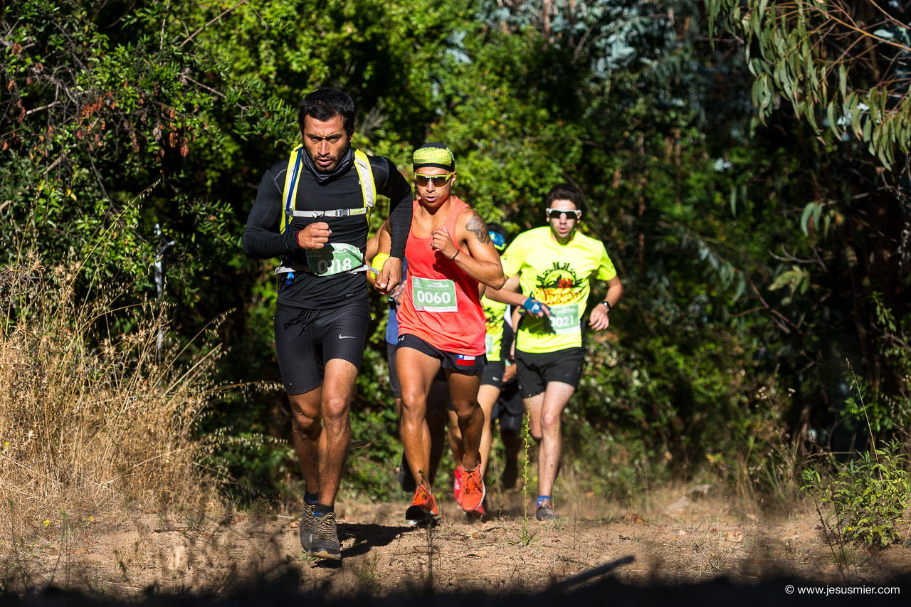 Salomon Trail Challenge 2018, foto 5. Foto: Jesus Mier