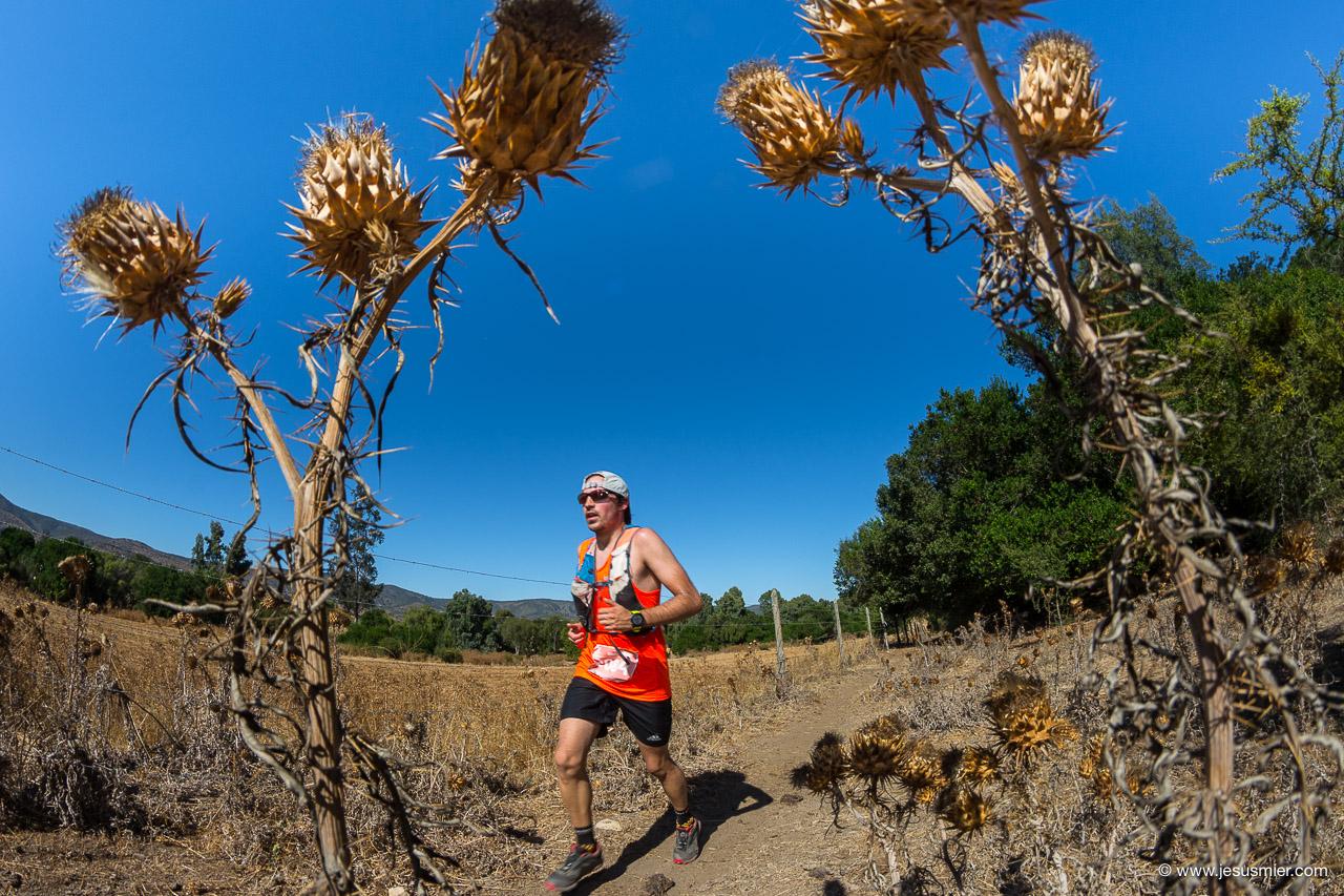 Salomon Trail Challenge 2018, foto 11. Foto: Jesus Mier